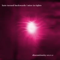 Music CD Discontinuity by Hate Turned Backwards